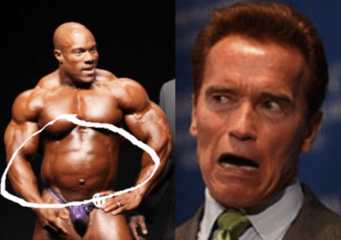 Arnold Schwarzenegger Wachswampe Bodybuilding