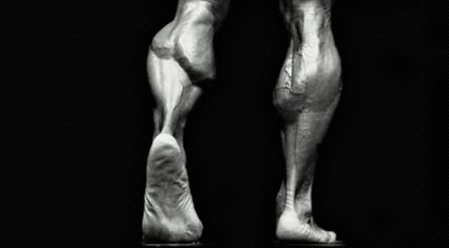 Wadenmuskeln aufbauen